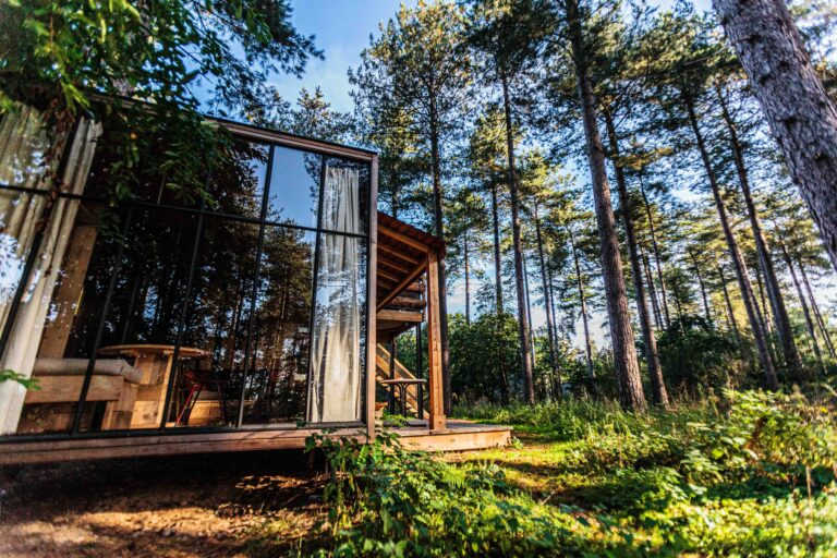 Airbnb cabin in the woods